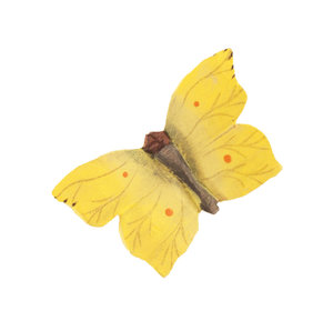 DecoButterfly Cedronella
